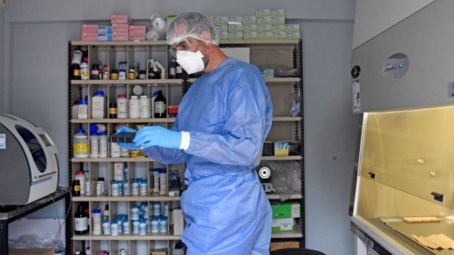 Las muestras están siendo analizadas en los laboratorios de la provincia.  Foto: Florencia Salto