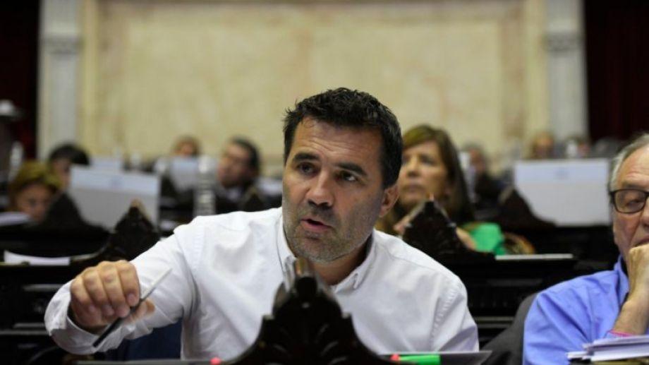 El diputado nacional, Darío Martínez