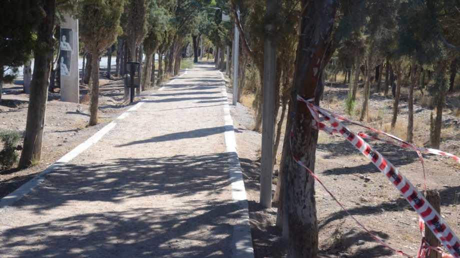 En Parque Norte el Municipio proyecta la plantación de 5 mil ejemplares.  Foto archivo
