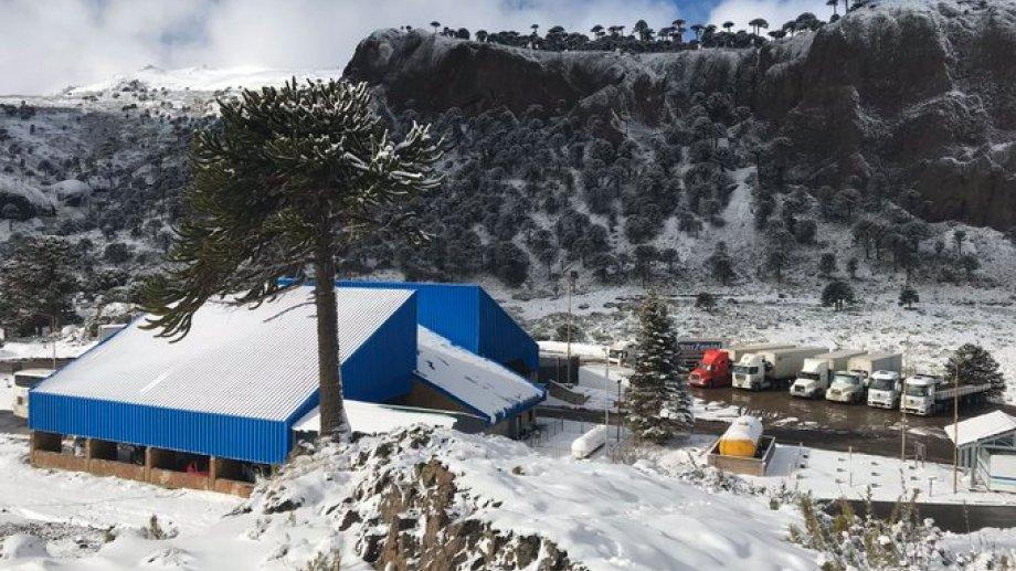 Mañana, unas 56 personas serán repatriadas desde Chile hacia Neuquén. Foto: archivo