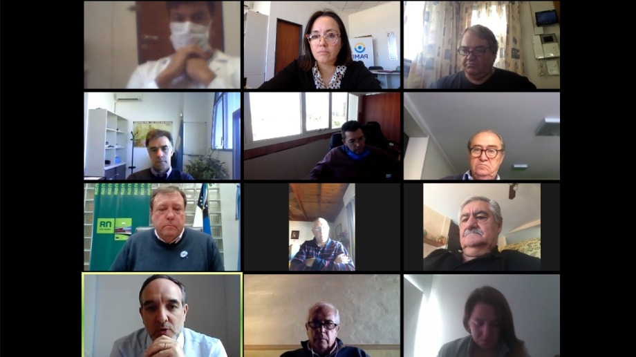 Prestadores, referentes de PAMI y senadores, durante la reunión virtual de la semana pasada.