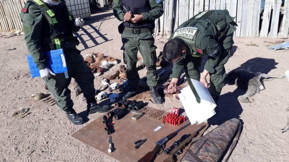 Secuestraron restos de animales silvestres en la zona Los Barreales. (Foto: Gentileza).