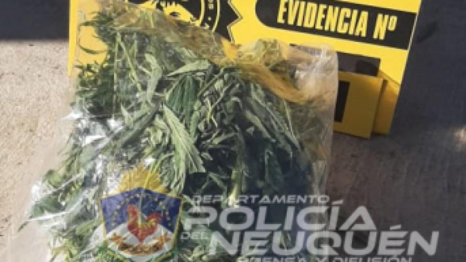 Lo detuvieron por romper la cuarentena y le encontraron 120 gramos de marihuana. (Foto: Gentileza).
