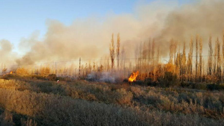 Los vecinos enviaron sus imágenes del incendio. Foto: gentileza.-