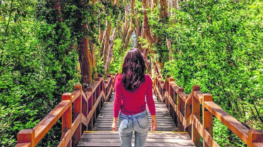 Paseos como el de Bosque de Arrayanes estarán regulados.