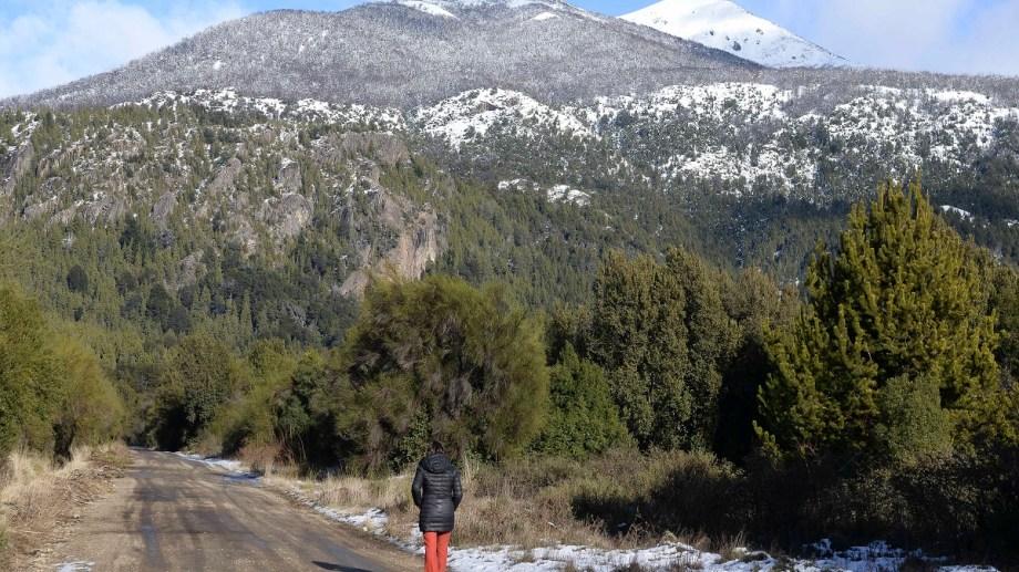 Los terrenos que sacará a subasta el municipio de Bariloche tienen un imponente paisaje detrás y están cerca de la costa del lago Moreno. Foto: Alfredo Leiva