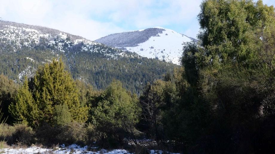 El gobierno de Gennuso propone subastar cinco lotes fiscales en la zona de Lago Moreno. Foto: Alfredo Leiva
