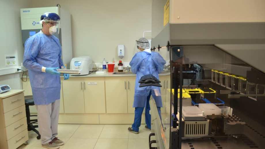 Los laboratorios privados procesaron casi 300 muestras en Neuquén. Foto: archivo.