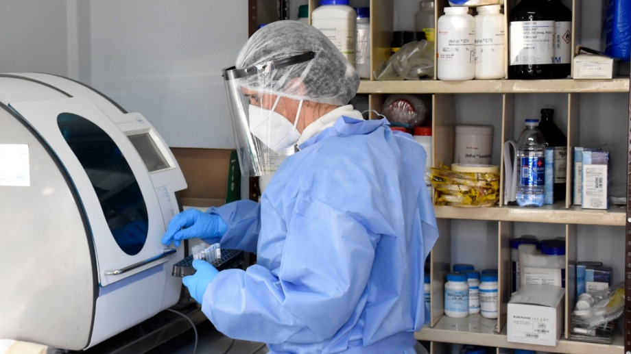 La mayoría de las muestras las procesa el Laboratorio Central de Neuquén. Foto: archivo Florencia Salto.