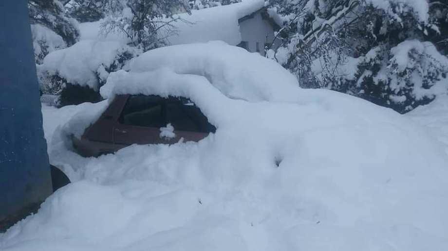 Algunos vehículos quedaron tapados de nieve. (Foto: gentileza)