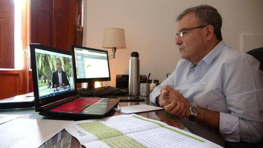 Pesatti participó de la videoconferencia. Foto Gentileza.