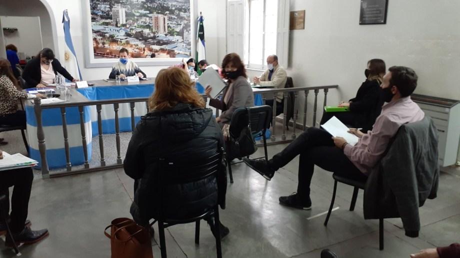 La secretaria de Hacienda municipal, concurrió al Deliberante para dar detalles sobre el destino del préstamo. (Foto Pablo Accinelli)