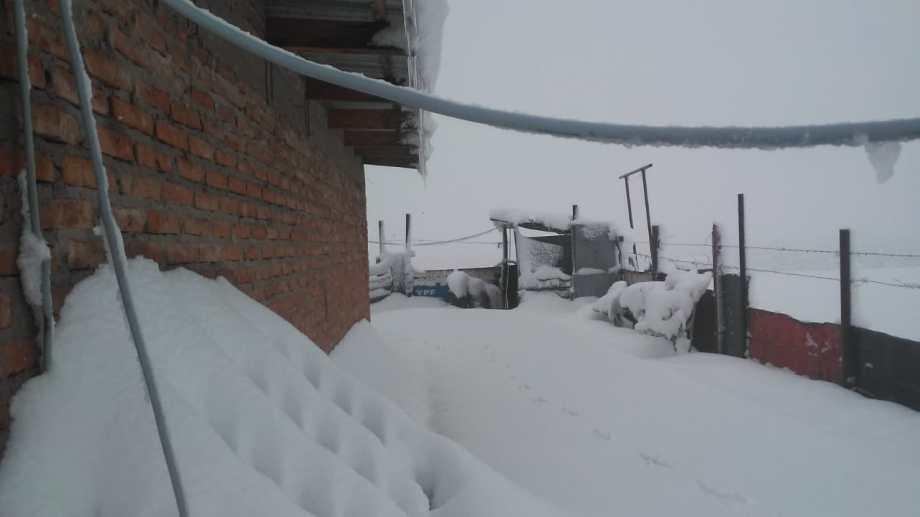 Enrique y su familia necesitan ayuda para superar la tormenta de nieve. (Foto: Gentileza)