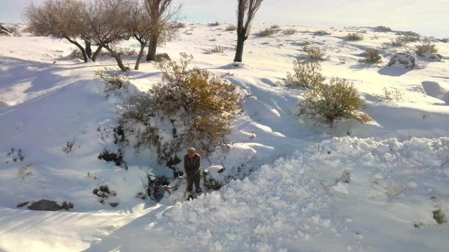 La nieve cubre un extenso sector de la Región Sur rionegrina. En partes supera los 60 cm. (foto: gentileza)