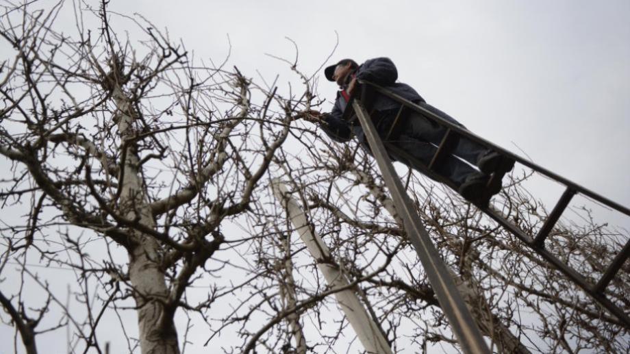 A pesar de las condiciones climáticas, los rurales siempre tienen que cumplir su tarea en las chacras. (foto: archivo)