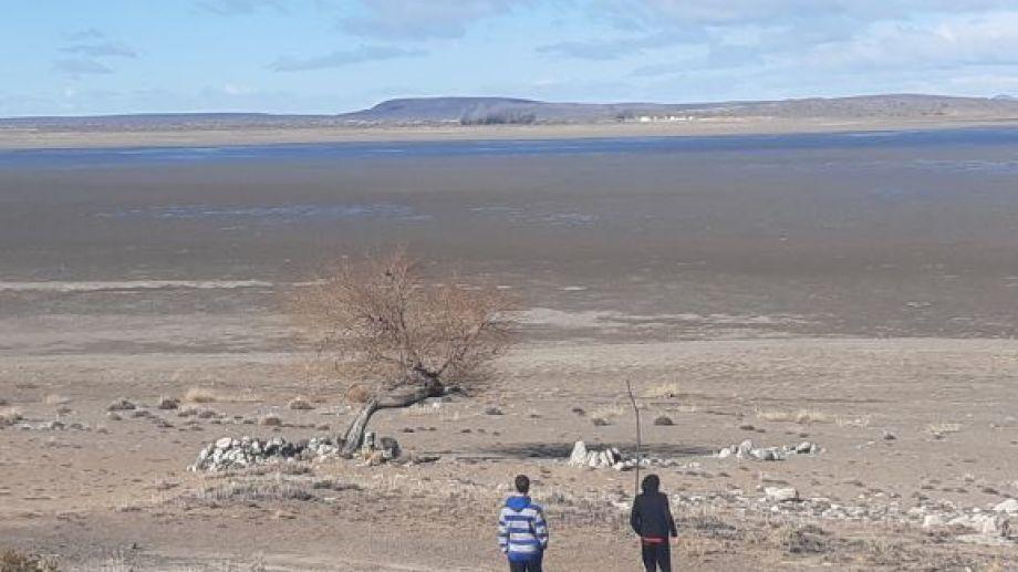 Poco a poco, el marrón del suelo se cubre de un verde azulado. (Foto: José Mellado)