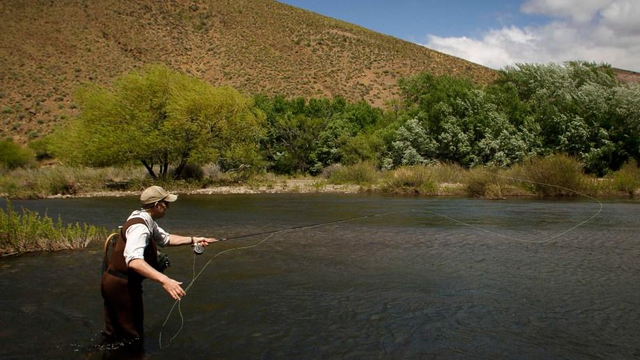 Pesca con mosca. Foto: Patricio Rodríguez
