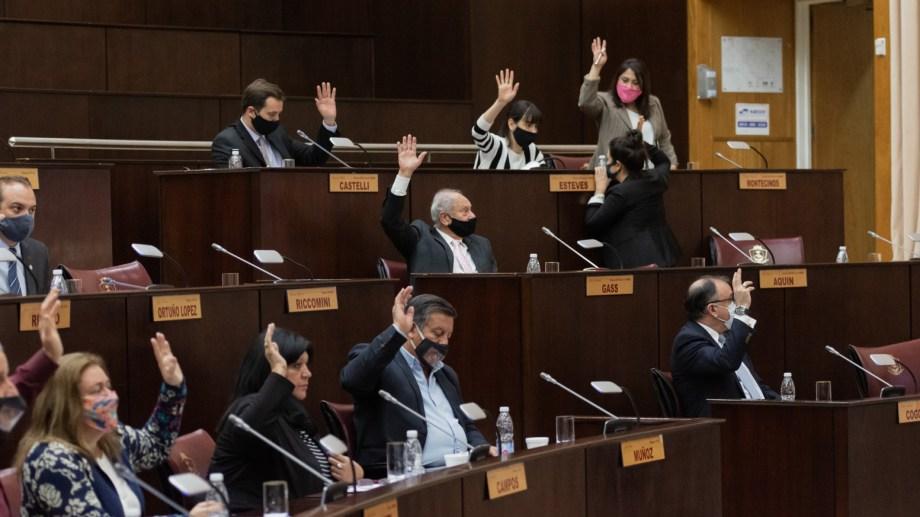 La sesión tuvo sorpresas cuando se trató el pliego de la candidata a defensora del Niño, la Niña y el Adolescente de Cutral Co. (Gentileza)