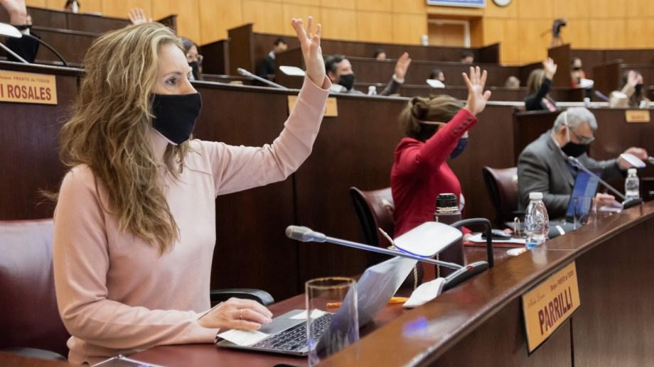 Diputados del Frente de Todos presentaron hoy la iniciativa. Foto: archivo