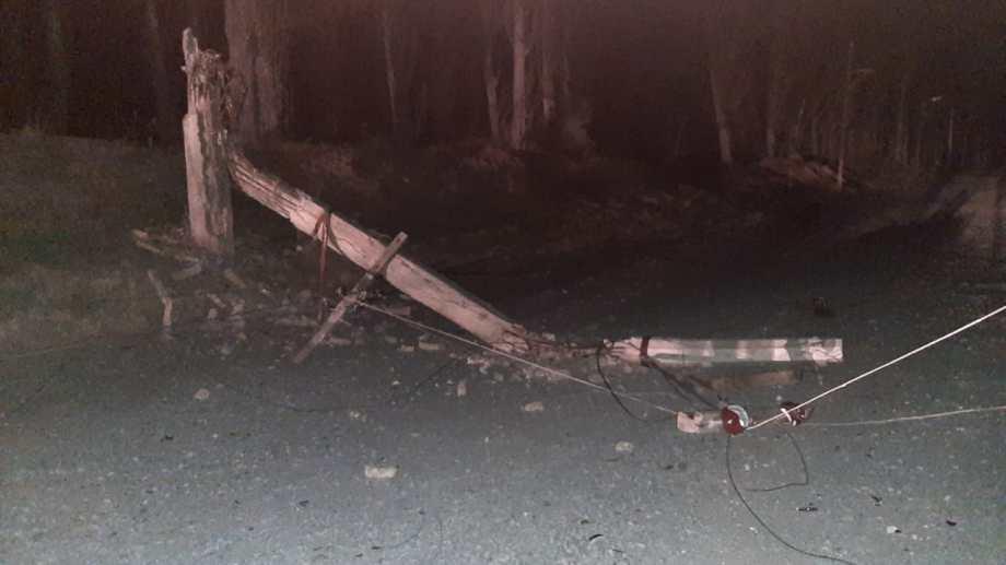 La caída de un arbol provocó el corte del suministro eléctrico en la zona rural de Regina. (Foto gentileza)