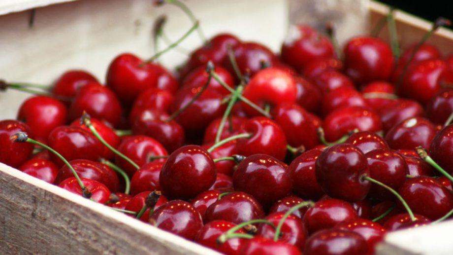 Neuquén es la tercera exportadora de cerezas del país.
