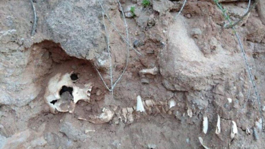 El esqueleto sería de un niño y tendría más de 100 años.