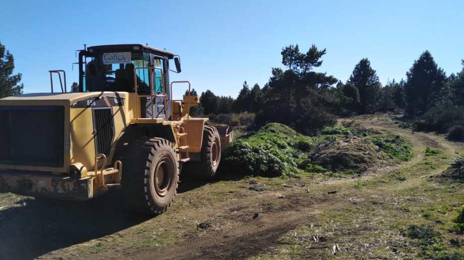 El Ejecutivo sostuvo que el sitio  en San Martín de los Andes tiene  buenas características biofísicas, distancia de áreas residenciales y adecuada accesibilidad.  Foto: Gentileza San Martin Informa