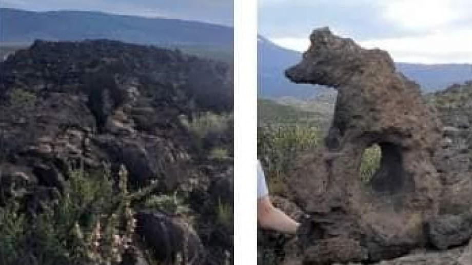 El oso de piedra que desapareció de un cerro de Buta Ranquil. (Foto: gentileza)