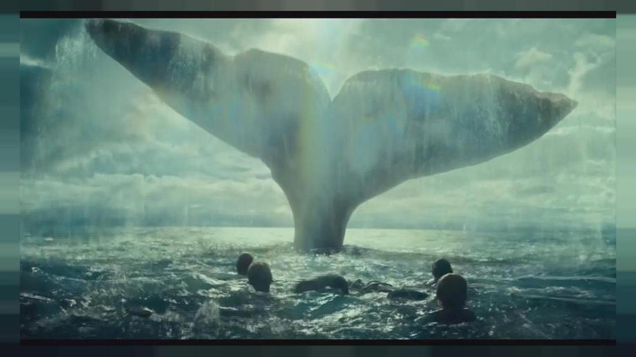 """Herman Melville se inspiró en el relato de un sobreviviente para escribir la novela """"Moby Dick"""".."""