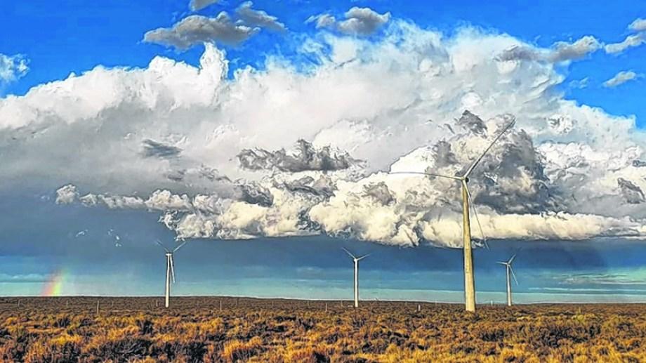 El parque eólico de Neuquén está en tierras provinciales y por ley fue exceptuado de todo impuesto local.