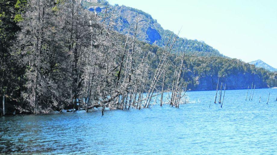 El riesgo sería bajo. En la Patagonia, el riesgo de que se produzca un tsunami en los lagos - como el Traful, en Neuquén- se da porque como resultado de las glaciaciones, las cuencas son muy profundas y muy extensas según el investigador Gustavo Villarosa. El estudio de los lagos sirve para hacer mapas de riesgo.