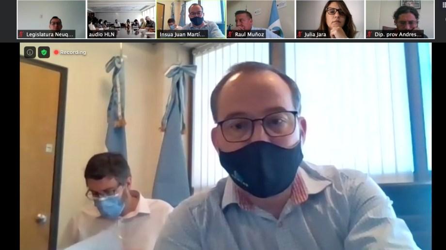 El director de Rentas, Juan Martín Insúa, expuso la reforma fiscal por videoconferencia a  los diputados de la comisión de Asuntos Constitucionales. (Legislatura de Neuquén)