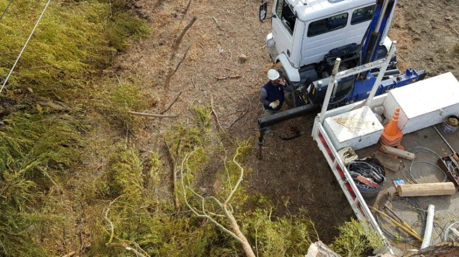 Las tareas de poda en el norte de Neuquén será realizada por 20 operarios del EPEN. Foto: Gentileza