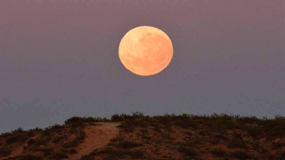 Un eclipse lunar es penumbral cuando la Luna entra en el cono de penumbra de la Tierra. La penumbra ocasiona un sutil oscurecimiento en la superficie luna. Foto: Alejandro Carnevale