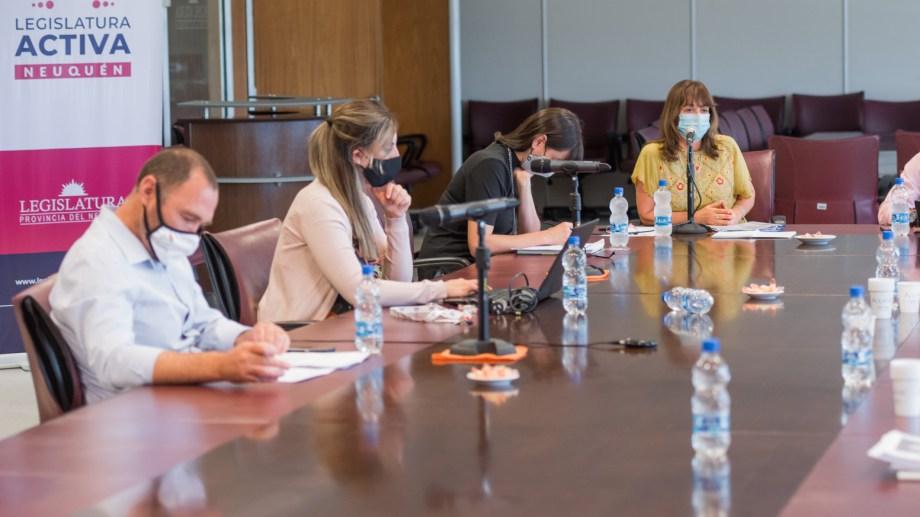 La comisión de Presupuesto que preside Liliana Murisi escuchó por tres horas al ministro Pons. (Prensa Legislatura)
