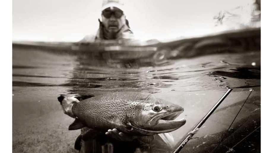 El momento en el que Manuel Linares devuelve al río esa gran trucha marrón en el Limay Superior. Foto: Mauro Ochoa