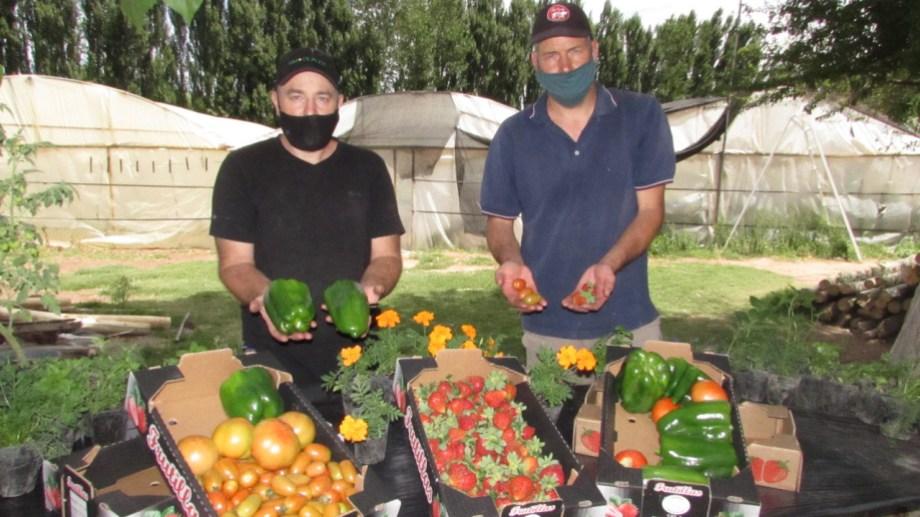 Emprendedores sustentables. Walter Mela y Waldemar Stickar son ingenieros agrónomos e impulsan el empleo de material volcánico para producir frutas y verduras a través del sistema hidropónico.