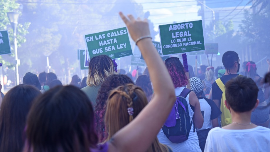 La legalización del aborto se debatirá esta semana en Diputados. Foto archivo Florencia Salto.