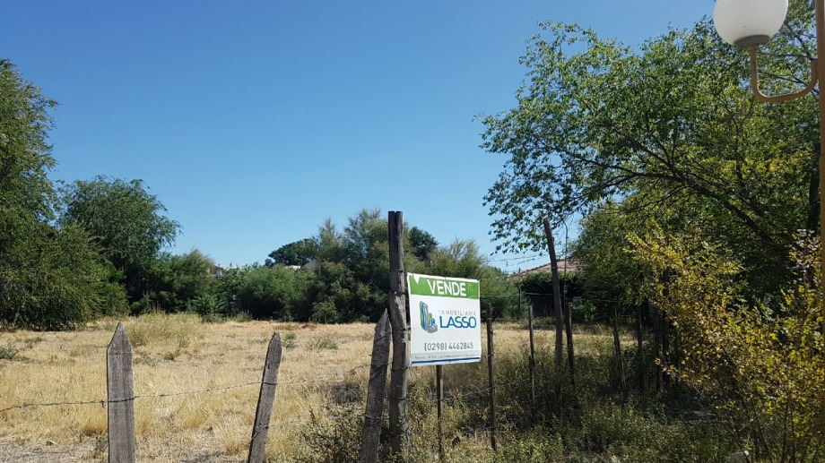 El municipio de Regina pidió la limpieza de terrenos baldíos. (Foto Néstor Salas)
