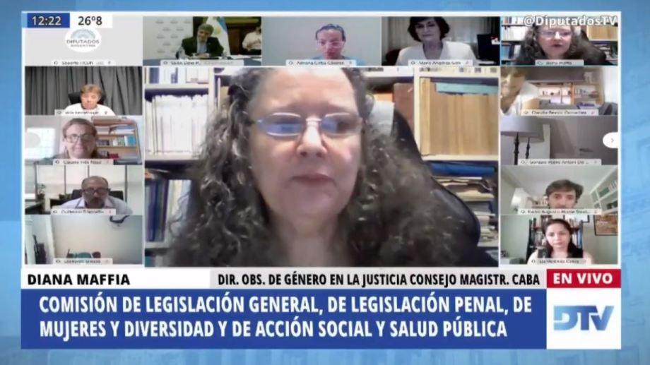 Aborto legal | Diana Maffía fue una de las primeras cuatro exposiciones que se escucharon en el plenario de comisiones.