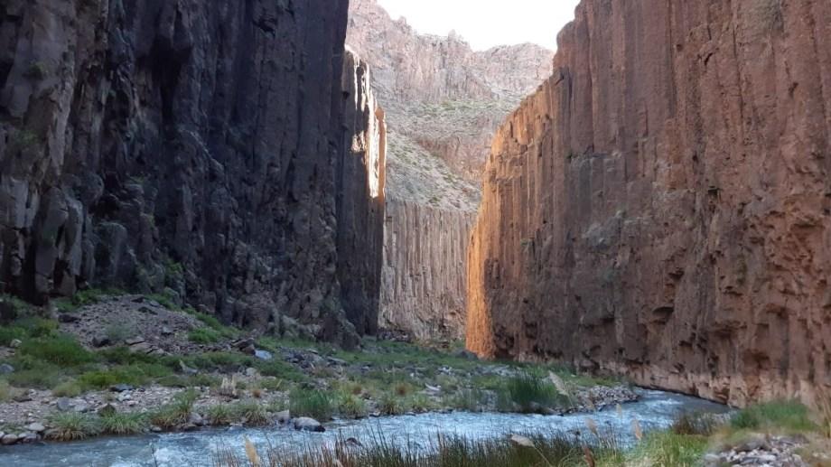 El Cañadón del Covunco, de unos 5 km de extensión en los que el arroyo corre entre altos paredones, hábitat de cóndores y pato de los torrentes, entre otras especies. Foto: Martín Muñoz.