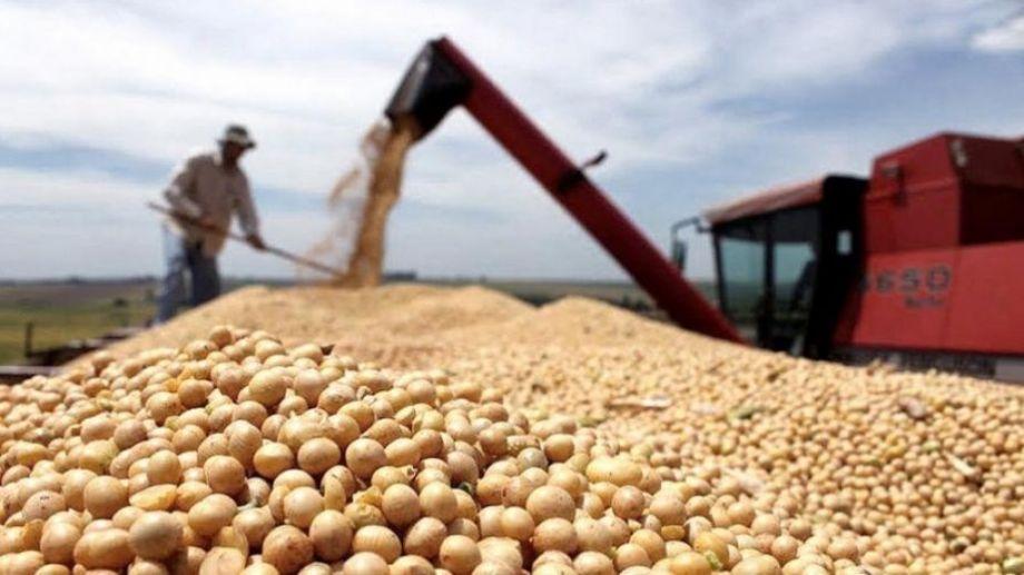 El USDA redujo hoy las estimaciones de producción de soja, maíz y trigo en Argentina.-