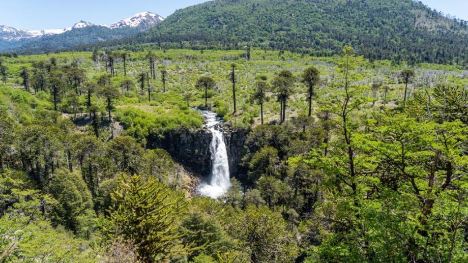Cascada Coloco en Ñorquinco. Foto: Matías Cordero.