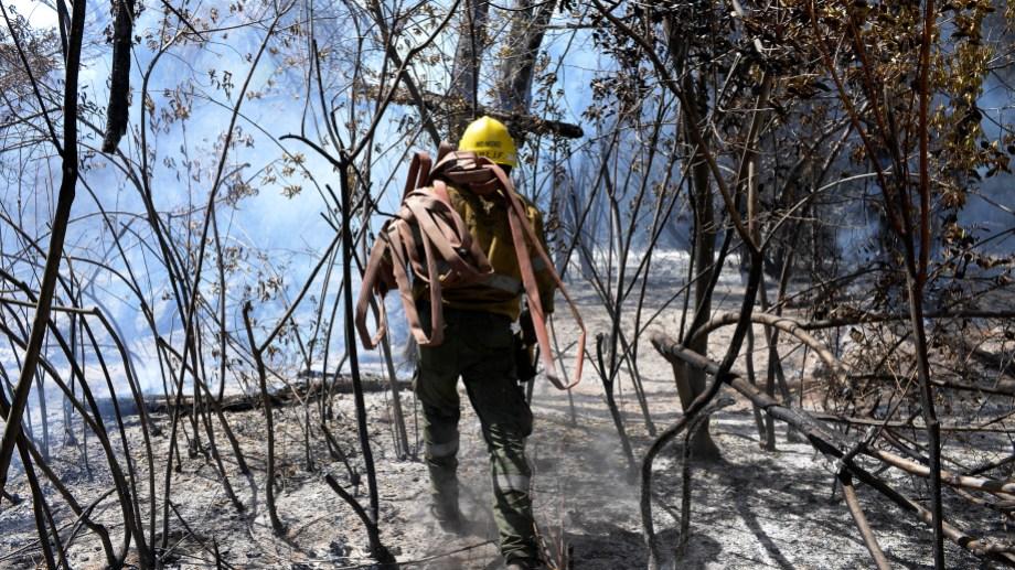 El incendio comenzó el 24 de enero pasado en un lote del barrio El Mirador, a unos 12 kilómetros de El Bolsón, y se expandió rápidamente. (Foto: Archivo)