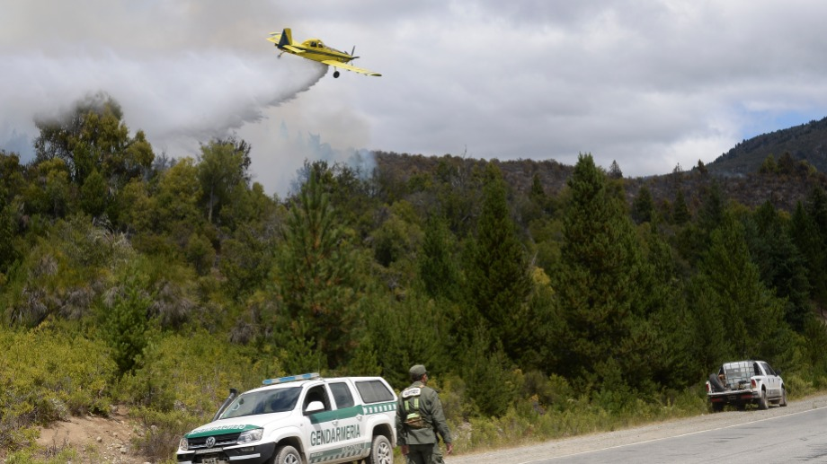 El incendio forestal en Cuesta del Ternero comenzó el 24 de enero. Foto: archivo