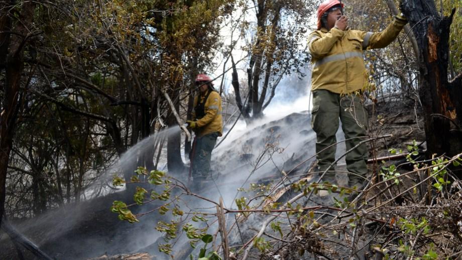 Brigadistas del SPLIF y de varias provincias trabajaron durante semanas para controlar el fuego en cercanías de El Bolsón. (foto de archivo de Alfredo Leiva)