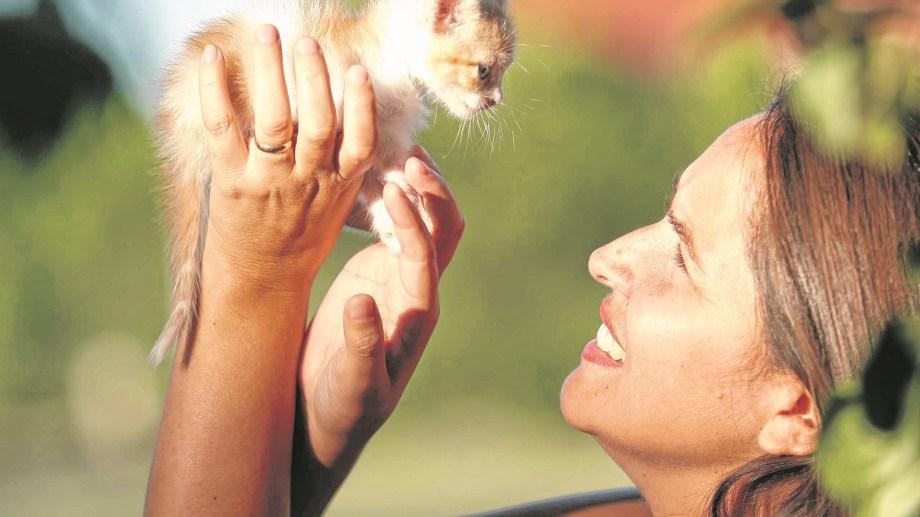 A la hora de buscar animales para los testeos, se apuntó a aquellos que tuvieron contacto cercano con personas positivas por covid-19.