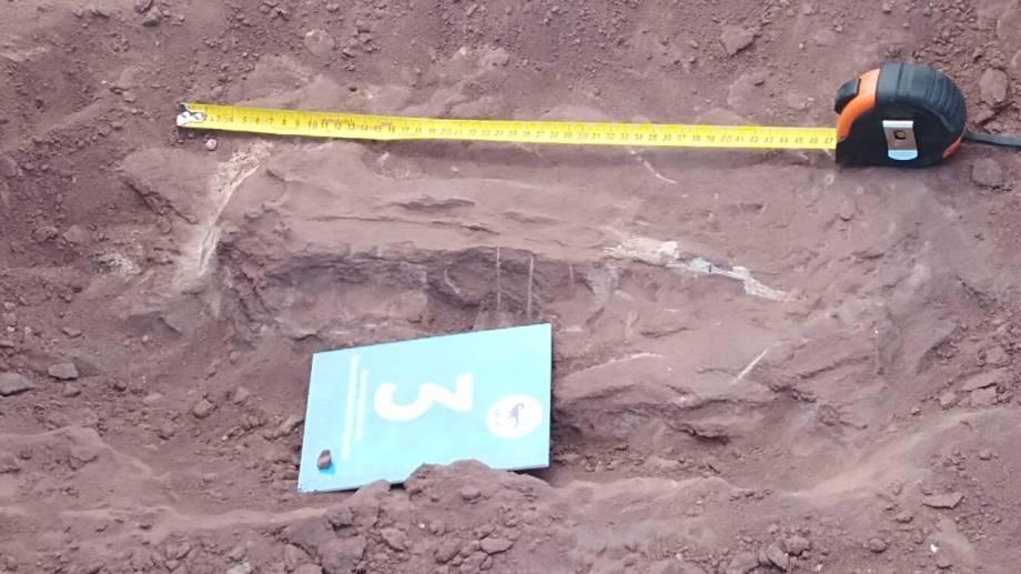 la Ley Nº 2184/96 protege al Patrimonio histórico, arqueológico y paleontológico en Neuquén. Foto: Gentileza Pampa Energía