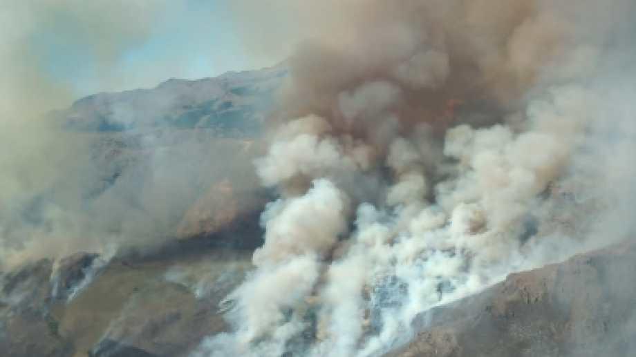 Las llamas devoraron en pocas horas casi el 70 por ciento del campo, que tiene unas 200 hectáreas. (foto Gentileza Splif)