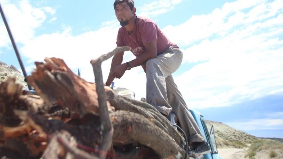 Cristian Firmapaz en la caja de su antigua camioneta modelo 1974, cargada de leña la semana pasada, en las cercanías de Fuerte Argentino. Foto: Luciano Cutrera